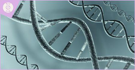 tismonet_chromozomalit